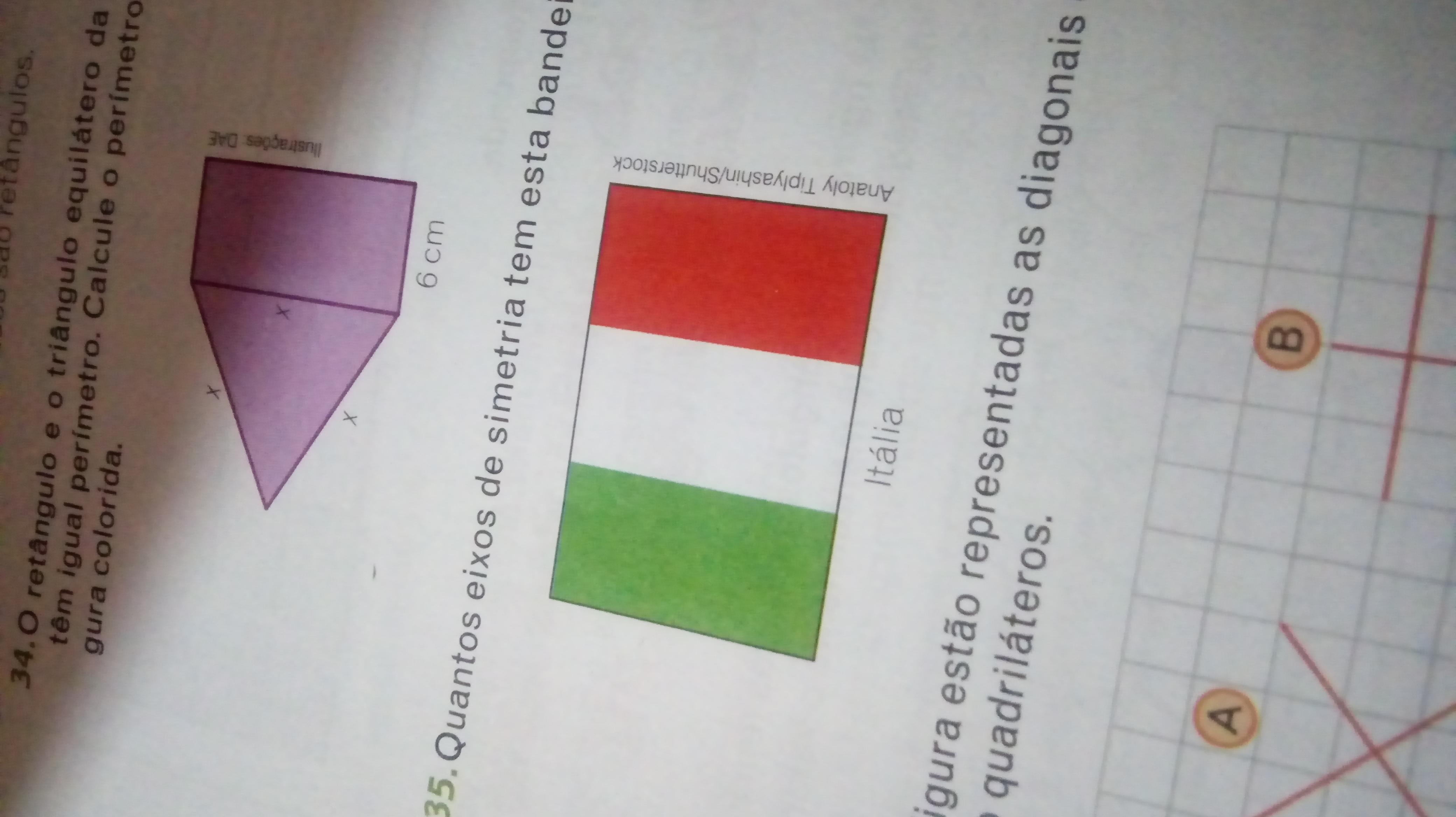Quantos eixos de simetria tem essa bandeira - Brainly.com.br 00c5b2181fdb2