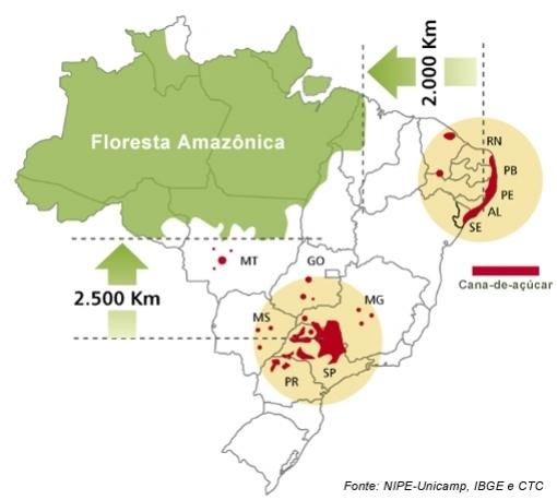 O Mapa Mostra A A Devastação Cada Vez Maior Da Floresta