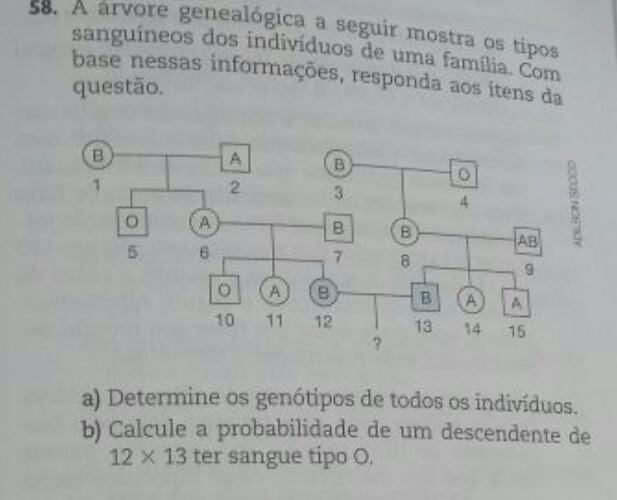a árvore genealógica a seguir mostra os tipos sanguíneos dos