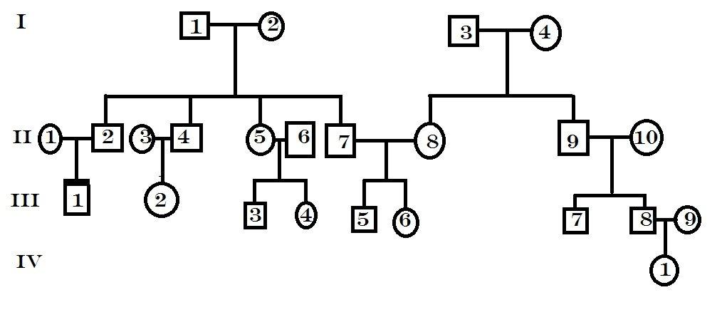 Suficiente Preciso fazer uma arvore genealogica com a tabela heredograma por  RI16