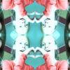 camirosangelyss