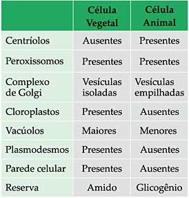 Resultado de imagem para tabela célula animal e vegetal