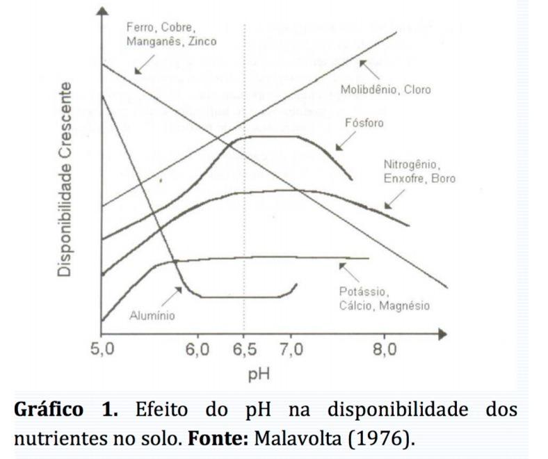O ph um dos fatores relevantes na disponibilidade de nutrientes no baixar png ccuart Choice Image